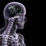 Делать рентген без вреда для здоровья можно определенное количество раз в год