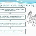 узи на определение беременности на ранних сроках