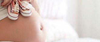 В моче лейкоциты при беременности введение